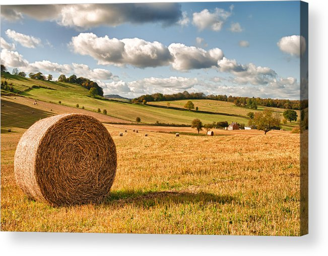 Straw Acrylic Print featuring the photograph Perfect Harvest Landscape by Amanda Elwell