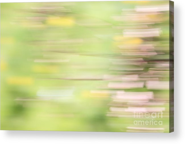 Green Acrylic Print featuring the photograph Rectangulism - S04a by Variance Collections