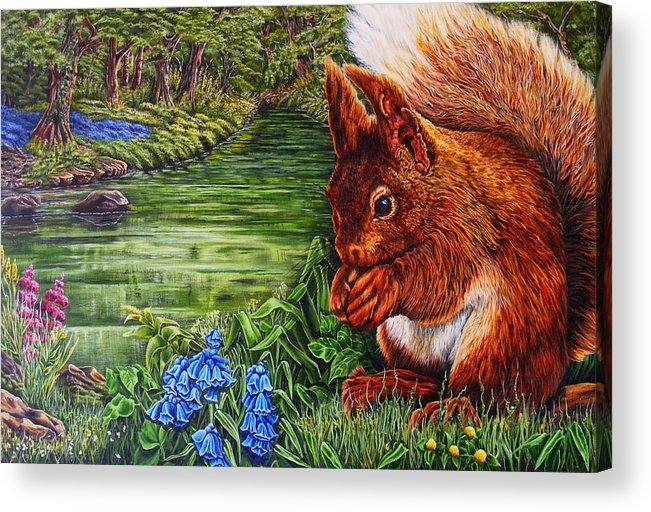 Red Sqiuril Acrylic Print featuring the painting Red Coate by Donald Dean