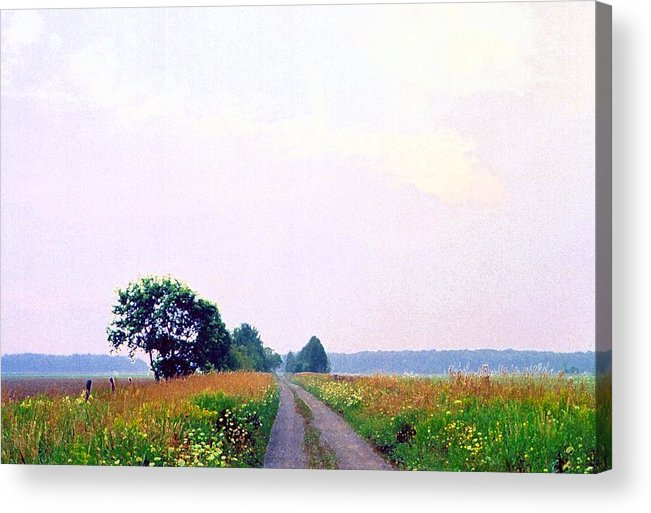 Landscape Acrylic Print featuring the photograph Road Through The Fields 3 Ae by Lyle Crump