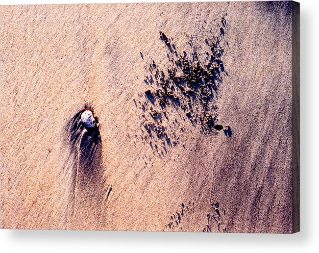 Sand Acrylic Print featuring the photograph Sand Crab Marks 2 by Lyle Crump
