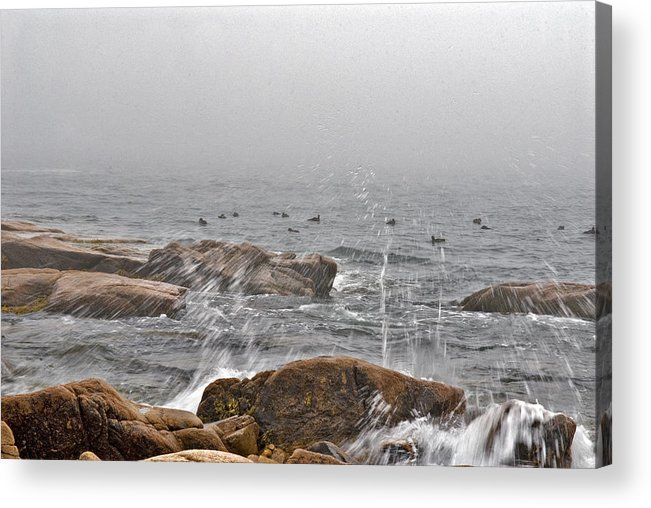 Landscape Acrylic Print featuring the photograph Sea Spray In Fog by Jack Goldberg