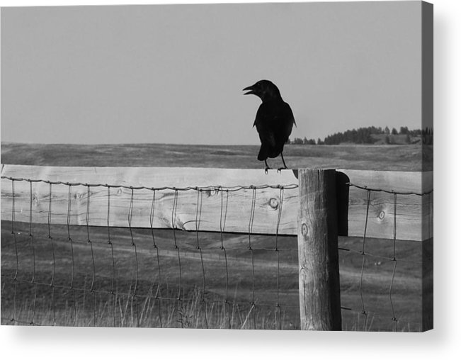 South Dakota Acrylic Print featuring the photograph Sentinel by Harold Clayberg