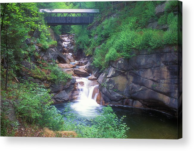 New Hampshire Acrylic Print featuring the photograph Sentinel Pine Bridge Flume Gorge by John Burk