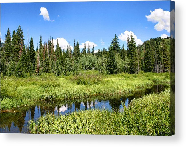Silver Lake Acrylic Print featuring the photograph Silver Lake by Kristin Elmquist