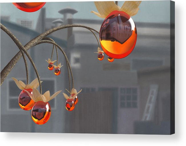 Orange Acrylic Print featuring the painting Simmondsia Vitra by Patricia Van Lubeck