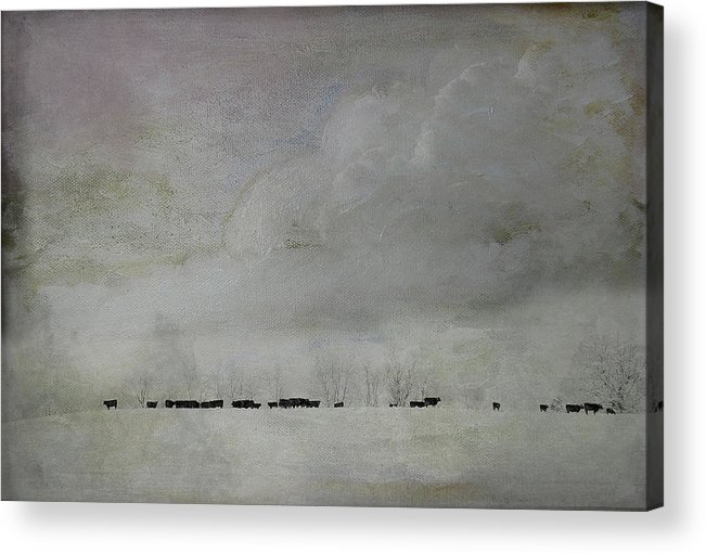 Snow Acrylic Print featuring the photograph Simplistic Beauty by Kathy Jennings