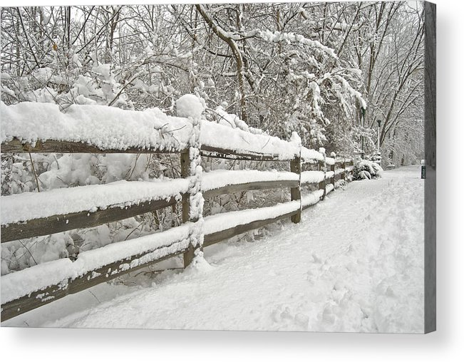 Beautiful Acrylic Print featuring the photograph Snowy Morning by Michael Peychich