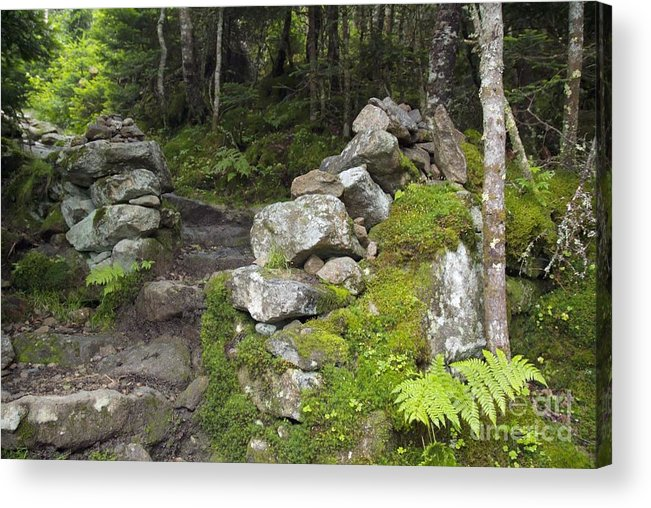 Stonewall Acrylic Print featuring the photograph Stone Gate - Edmands Path - White Mountains New Hampshire by Erin Paul Donovan