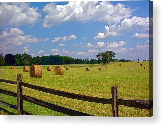 Landscape Acrylic Print featuring the photograph Sun Shone Hay Made by Byron Varvarigos