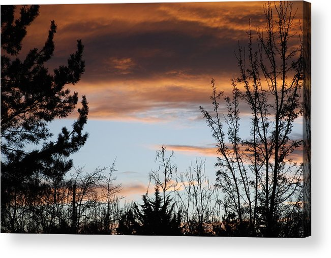 Sunset Acrylic Print featuring the photograph Sunset Thru The Trees by Rob Hans
