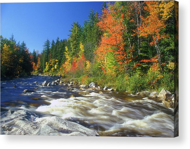 New Hampshire Acrylic Print featuring the photograph Swift River White Mountains by John Burk