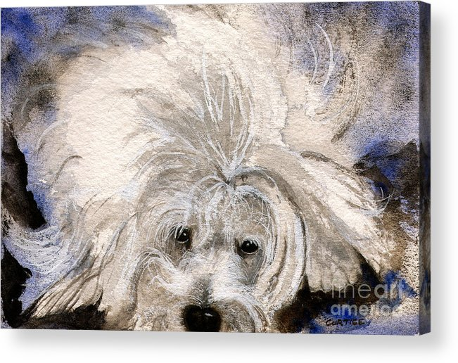 Animal Acrylic Print featuring the painting The Girlfriend by Carolyn Curtice