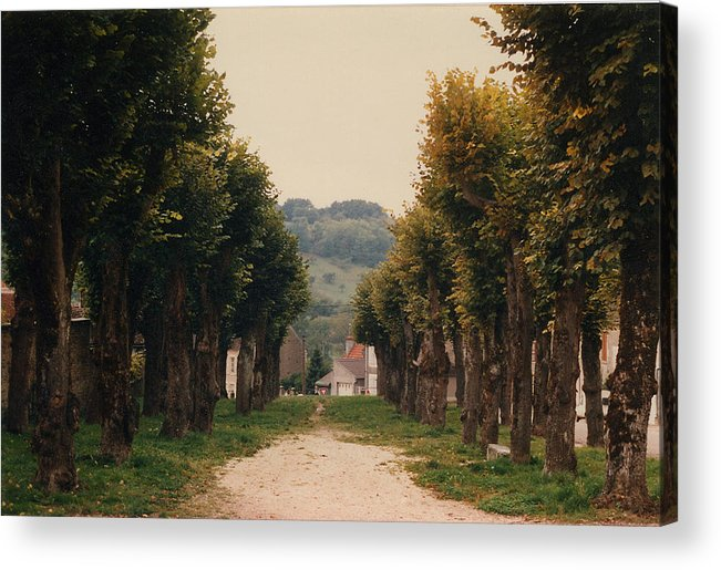 Trees Acrylic Print featuring the photograph Tree Lined Pathway In Lyon France by Nancy Mueller