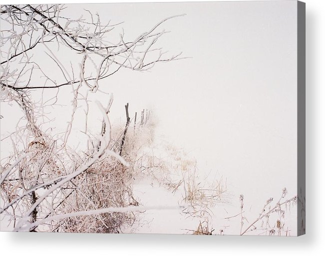 Snow Acrylic Print featuring the photograph Vanishing by Jennifer Trone