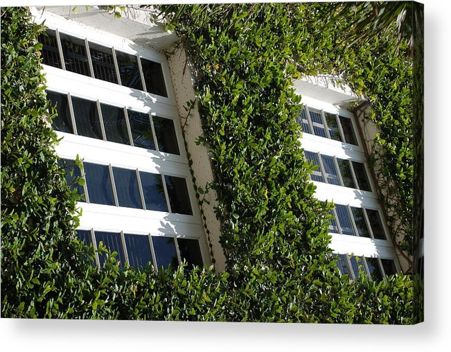 Architecture Acrylic Print featuring the photograph Vines And Glass by Rob Hans