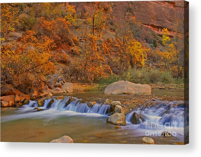 Utah Acrylic Print featuring the photograph Virgin River In Autumn by Dennis Hammer