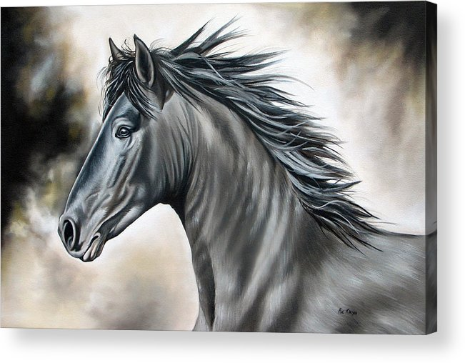 Horse Acrylic Print featuring the painting Wanapun by Ilse Kleyn