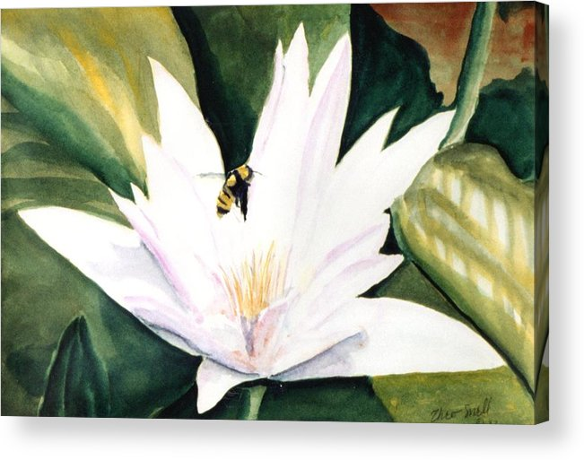 Floral Acrylic Print featuring the painting Waterlily by Theo Snell