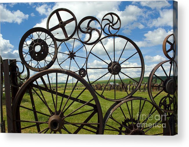 Wheels Acrylic Print featuring the photograph Wheels by Louise Magno