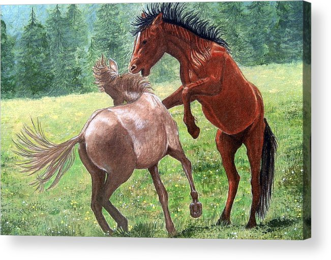 Wild Acrylic Print featuring the drawing Wild Horses by Lorraine Foster