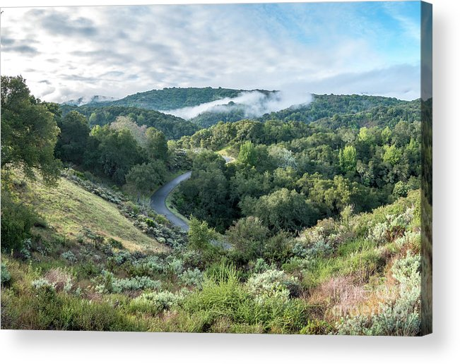California Acrylic Print featuring the photograph View Of Curved Road Through Dense Forest Area With Low Clouds Ov by PorqueNo Studios