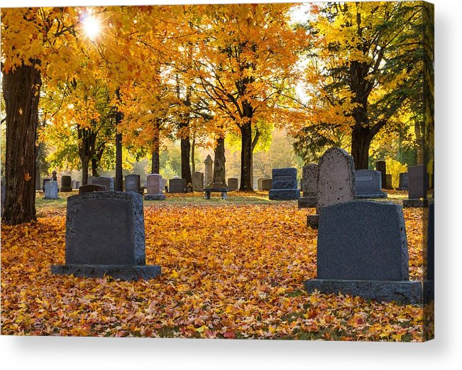 Forest Hill Cemetery Acrylic Print featuring the photograph Forest Hill Autumn Light by Mary Amerman