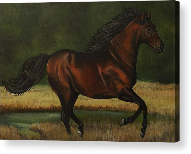 Horse Acrylic Print featuring the painting Dark Horse by Lucy Deane