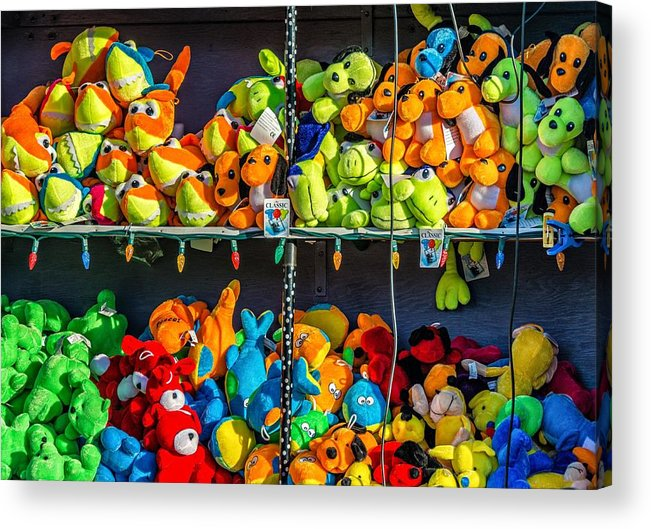 Bolton Acrylic Print featuring the photograph Carnival Critters by Steve Harrington