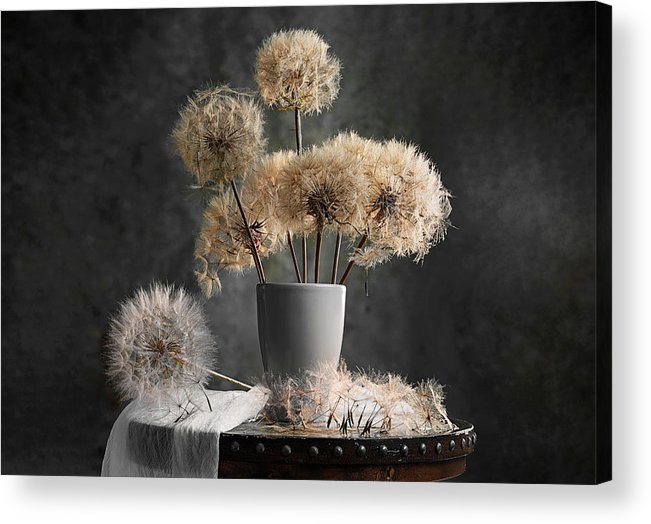 Dandelion Acrylic Print featuring the photograph Dandelion Seed Pod by Lydia Jacobs
