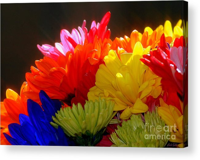 Art Acrylic Print featuring the photograph Life Is Short Buy The Flowers by Linda Galok