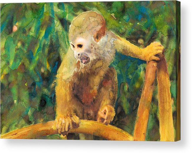 Monkey Acrylic Print featuring the painting Monkey In Tree by Susan Powell
