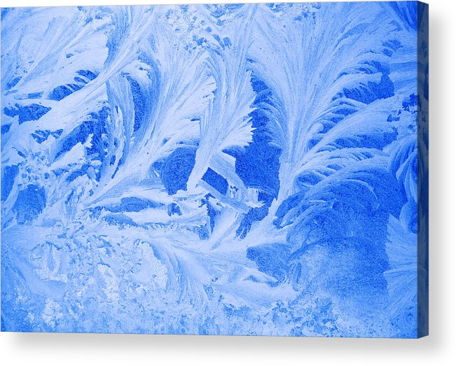 Nature Acrylic Print featuring the photograph Nature's Art by Ramunas Bruzas