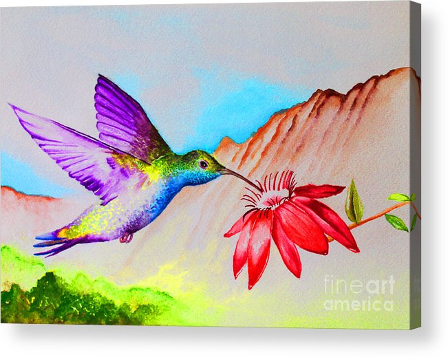 Hummingbird Acrylic Print featuring the painting Sipping Sweet Contemporary by Jerome Wilson