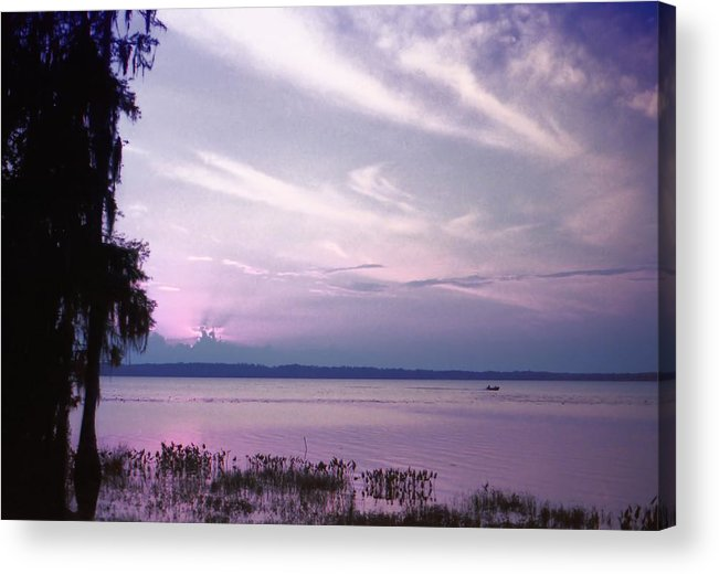 Blue Acrylic Print featuring the photograph Brilliant Everglades Sunset by Lynnette Johns
