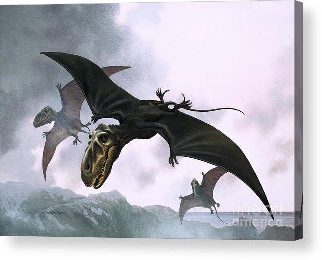 Dimorphodon; Dinosaur; Bird; Pre-historic Animals; Prehistoric Animals; Dinosaurs; Pterosaurs Acrylic Print featuring the painting Dimorphodon by William Francis Phillipps