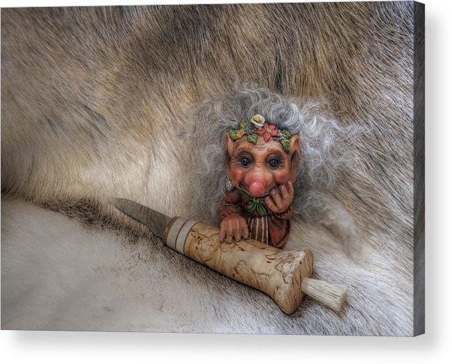 Troll Acrylic Print featuring the photograph Mushroom Hunter by Merja Waters