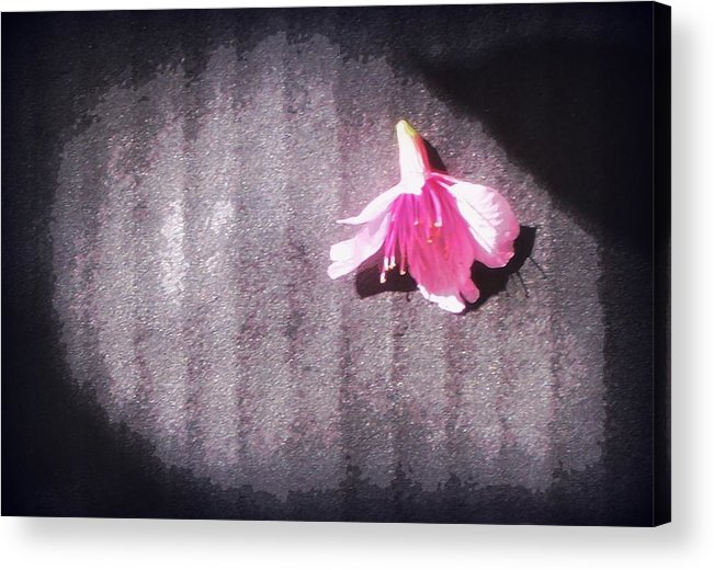 Acrylic Print featuring the painting On Stage by Wendy Wiese