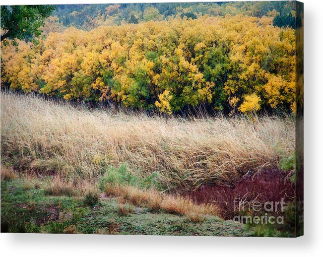 Palo Duro Acrylic Print featuring the photograph Palo Duro Fall Snow by Fred Lassmann