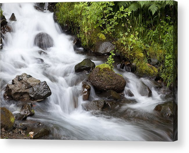 Gorge Acrylic Print featuring the photograph Spring In The Gorge by John Gregg