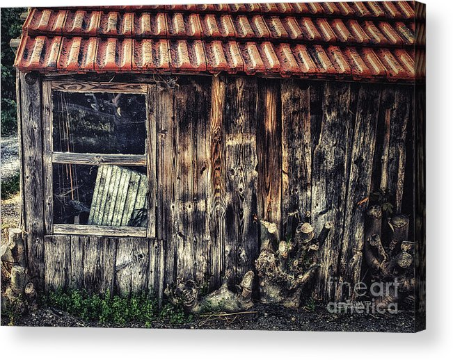 Photo Acrylic Print featuring the photograph Wayside by Jutta Maria Pusl