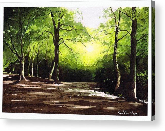 Judy Woods Acrylic Print featuring the painting Judy Woods by Paul Dene Marlor