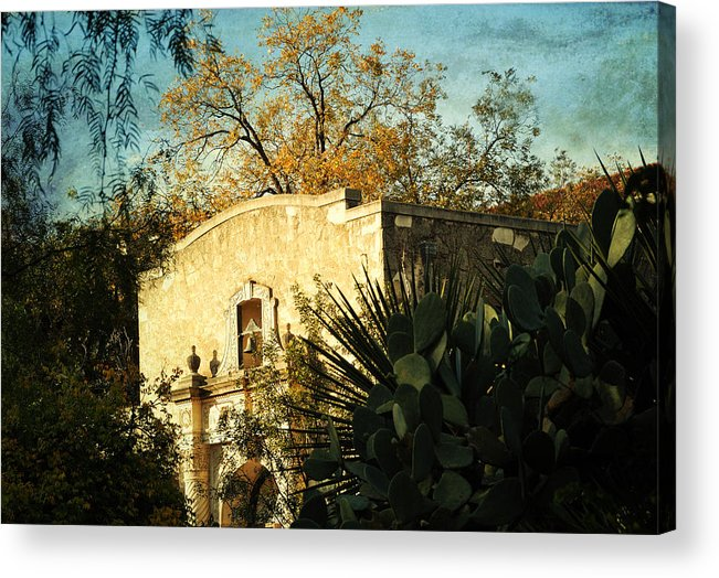 San Antonio Acrylic Print featuring the photograph Alamo Mission by Iris Greenwell