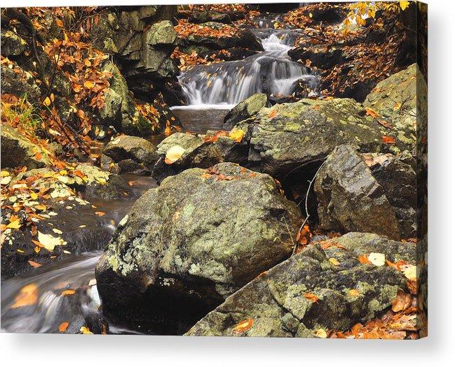 Autumn Acrylic Print featuring the photograph Autumn On The Rocks by Stephen Vecchiotti