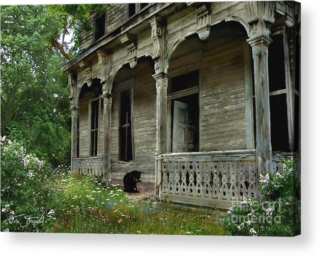 Haunted House Acrylic Print featuring the photograph Cat House 2 by Tom Straub