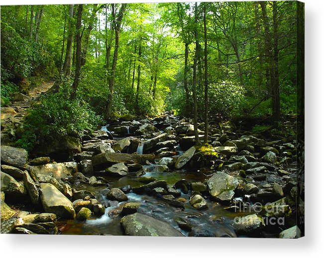 Trail Acrylic Print featuring the photograph Chimney Tops Trail by David Lee Thompson