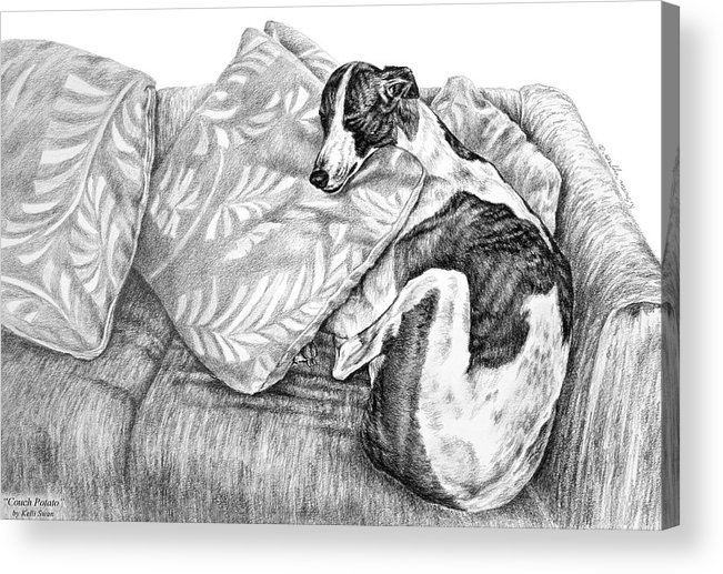 Greyhound Acrylic Print featuring the drawing Couch Potato Greyhound Dog Print by Kelli Swan