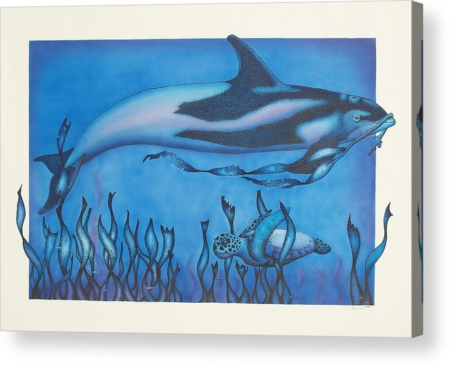 Dolphins Acrylic Print featuring the drawing Dolphin And Turtle by Erik Loiselle