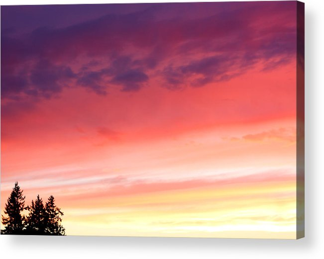 Sunset Acrylic Print featuring the photograph Edge Of The Forest Sunset by Nick Gustafson