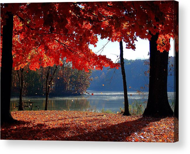 Foggy Sunrise Acrylic Print featuring the photograph Fall by Monica Lewis